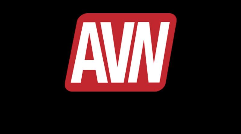 AVN logo banner