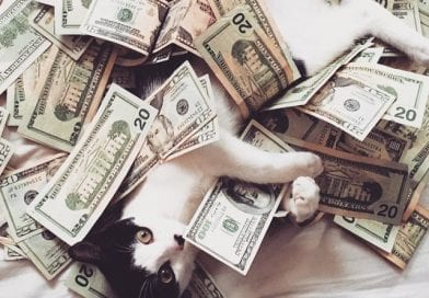 Financial Domination Fetish Guide – When Money Is Power